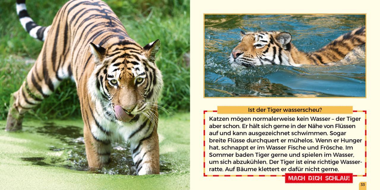 Beste Malseite Zoo Bilder - Druckbare Malvorlagen - helmymaher.com
